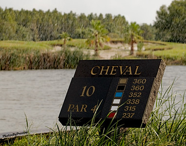 The Community Of Cheval