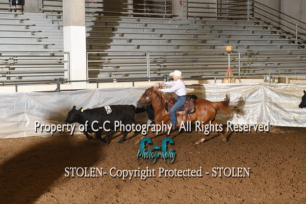 #11 RH  The Daddy RSNC July/18  Cheyenne WY