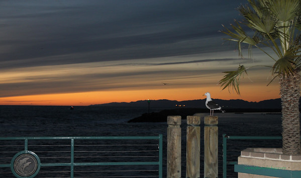 View from the Redondo Beach Pier at Sunset, 2/20/11.