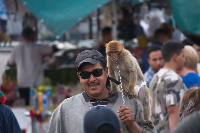 medina morocco 2018.jpg