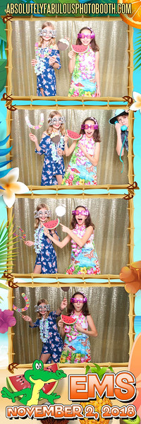 Absolutely Fabulous Photo Booth - (203) 912-5230 -181102_195259.jpg