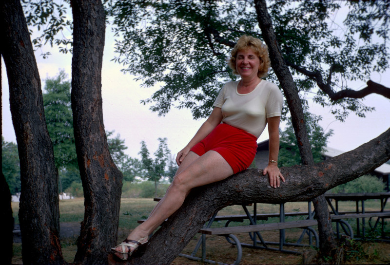 mommy glamour pose in tree 1.jpg