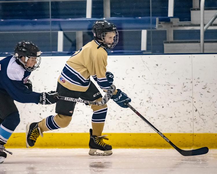 2018-2019_Navy_Ice_Hockey_Squirt_White_Team-51.jpg