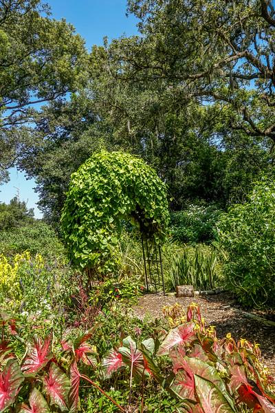 Mead-Gardens-36.jpg
