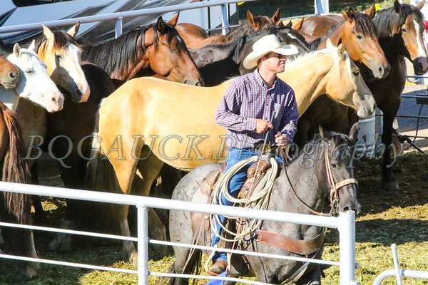 Kit Carson County Rodeo Friday perf 2019