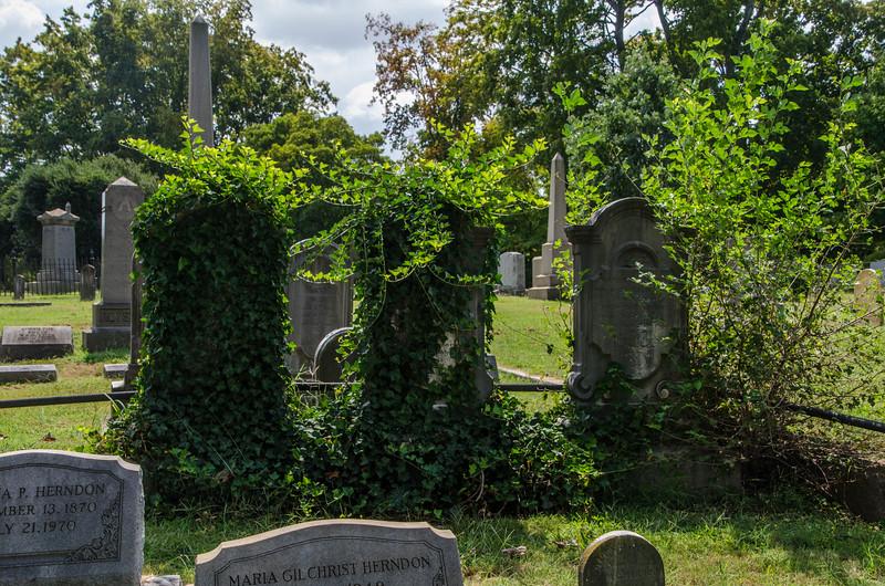 Hollywood Cemetery -10.jpg