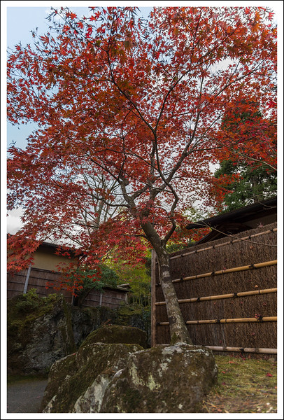 Hakone Museum-0778.jpg
