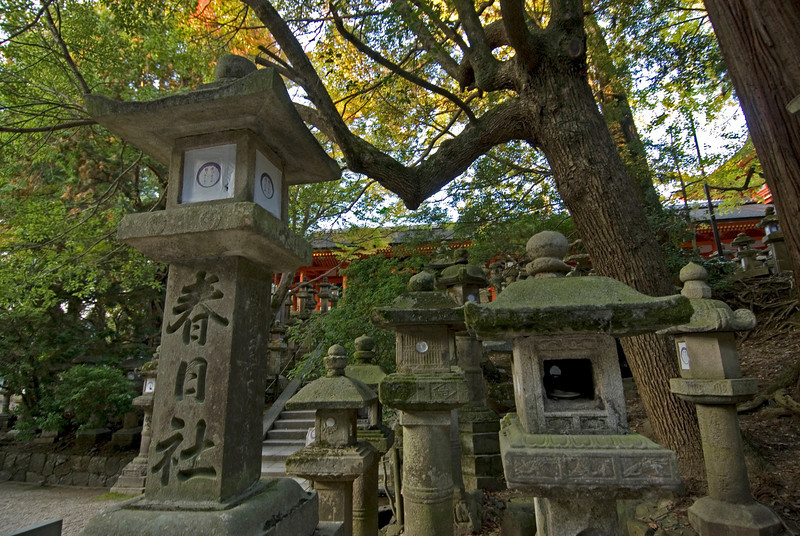 Stone lanterns at Kasuga Shrine in Nara, Japan