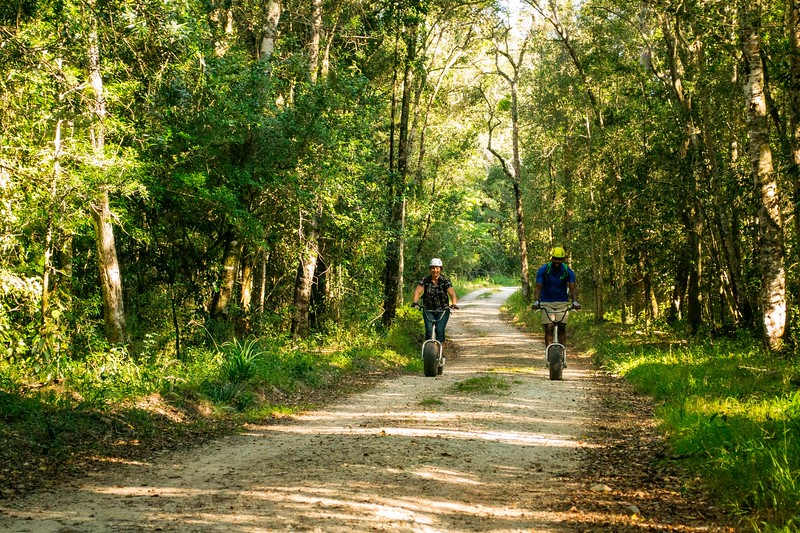 two people on sooters riding through forest