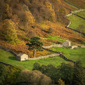 The Yorkshire Dales and North Yorkshire coast