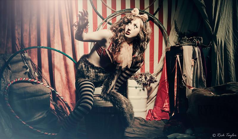 Fi Rooney - Circus, Circus!