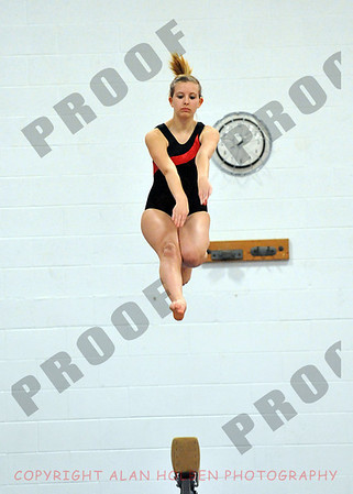 Gymnastics - Coldwater at Mason - Jan 6 (Coldwater team)