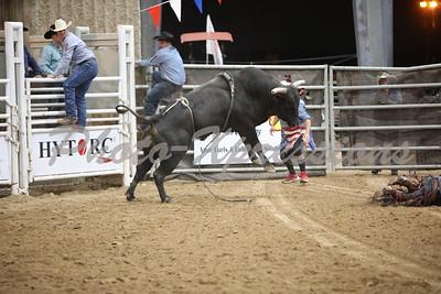 Bull Riding Thursday Night