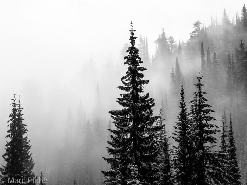 2014 Valhalla Mountain Touring-113.jpg