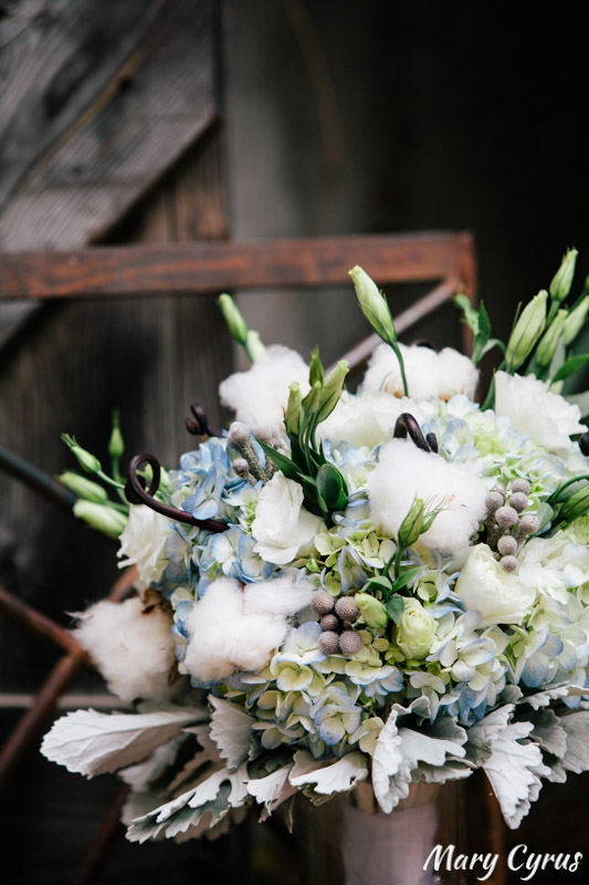 Bridal bouquet with dusty miller, blue hydrangea, green roses, and cotton - perfect for a McKinney Cotton Mill wedding! | Photo by Mary Cyrus Photography - Weddings & Portraits in Dallas & Beyond
