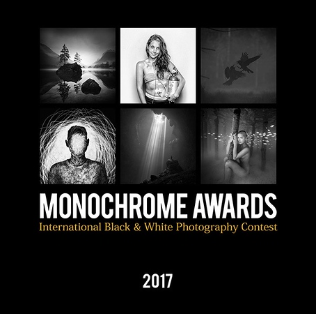 30.01.2018 - Monochrome Photography Awards 2017