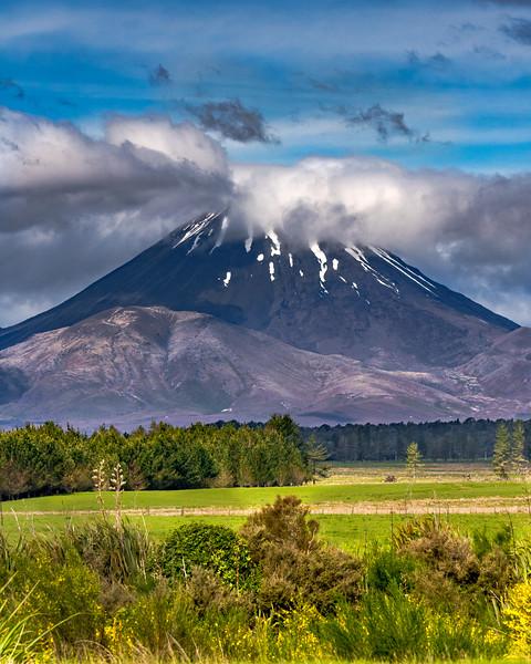 New Zealand_025.jpg