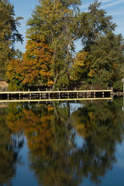 fall 2015-7233.jpg