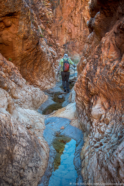 Stephen dodging pools in upper Portals Canyon