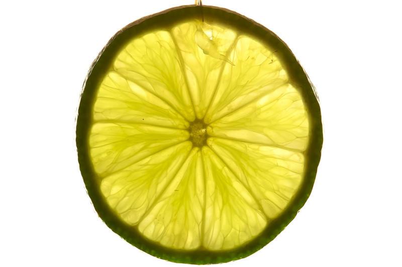 Model Fruit.jpg
