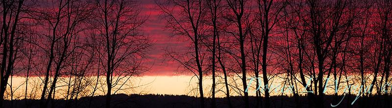 Sunset sky_0132 copy.jpg