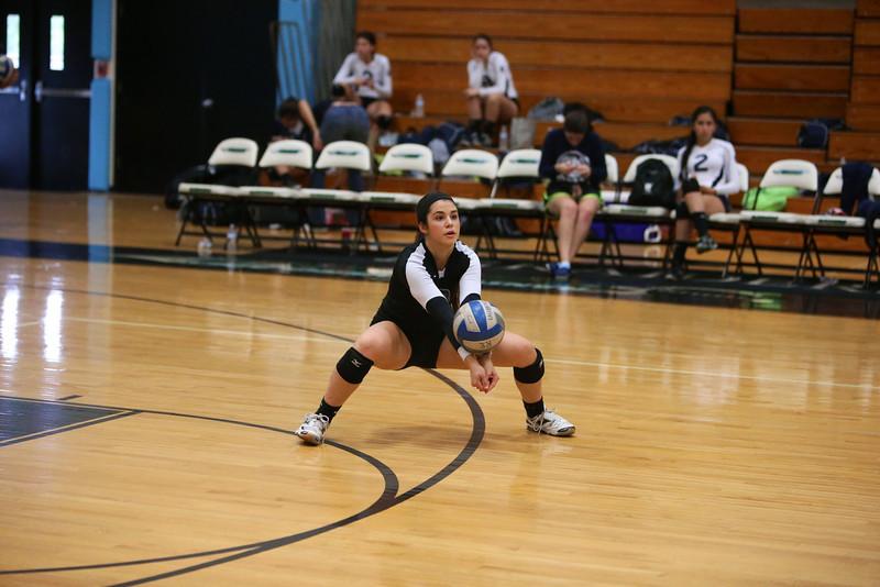 Volleyball 115.jpg