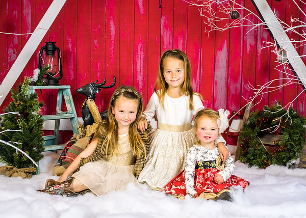 Christmas Mini Sessions 2018