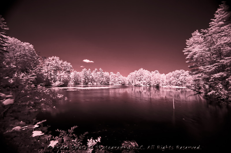 Infrared Photography Essays