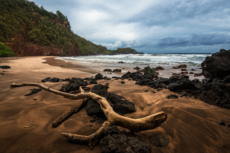 Driftwood in Koki Beach Park, Maui, Hawaii