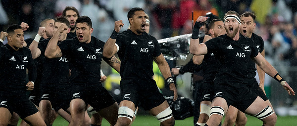Haka by All Blacks during game 9 of the British and Irish Lions 2017 Tour of New Zealand, the second Test match between  The All Blacks and British and Irish Lions, Westpac Stadium, Wellington, Saturday 1st July 2017 (Photo by Kevin Booth Steve Haag Sports)  Images for social media must have consent from Steve Haag