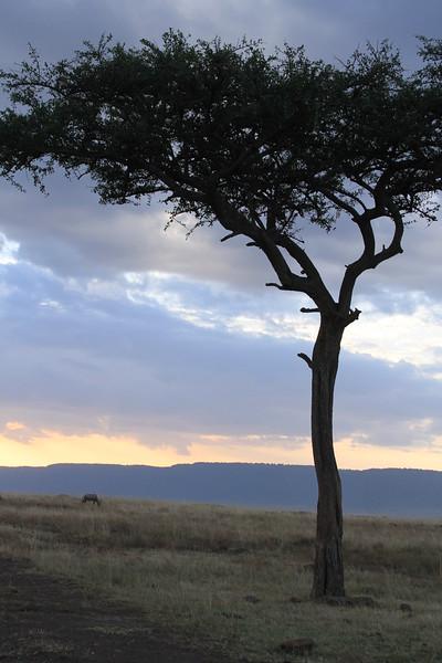 Kenya Part2 '15 169.JPG