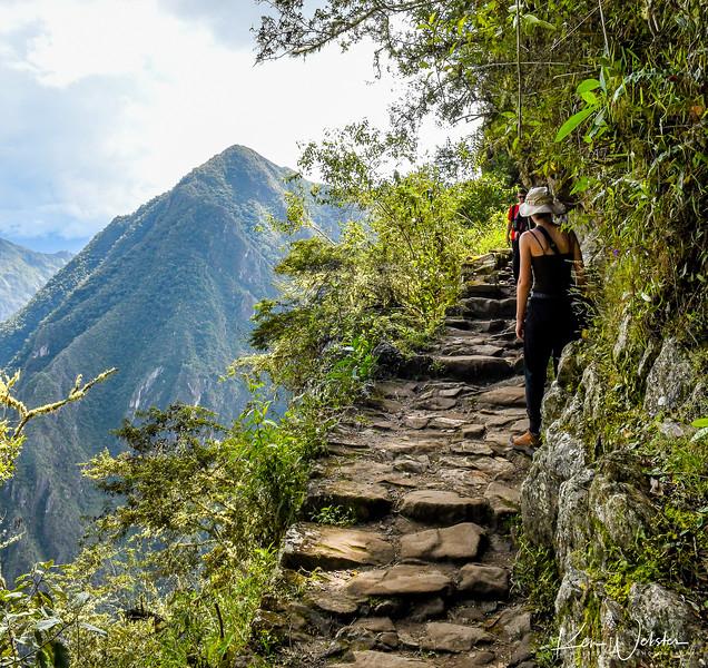 2018 Machu Picchu-56.jpg