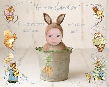Vivienne Josephine 2020