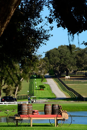 Grand Oaks Equestrian Resort