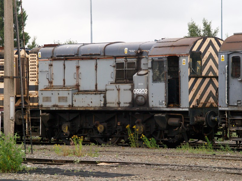 P7132284.JPG