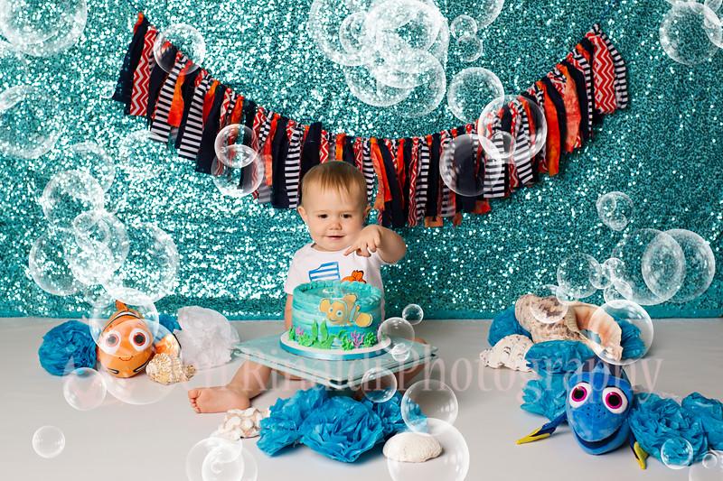 Logan 1 Year & Cake Smash 9/5/17