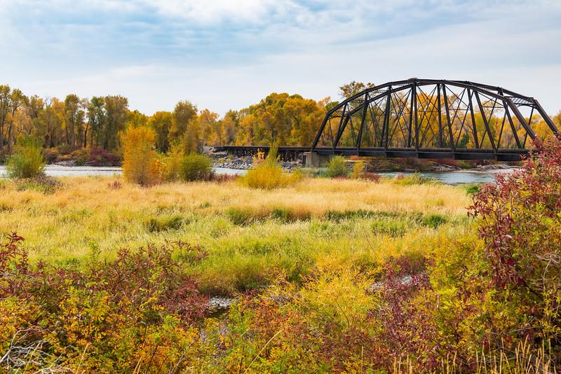 Bridge To Fall