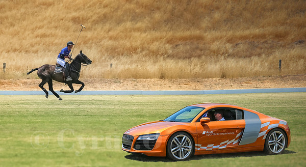 The Audi Sportscar Experience & S.F. Polo Classic
