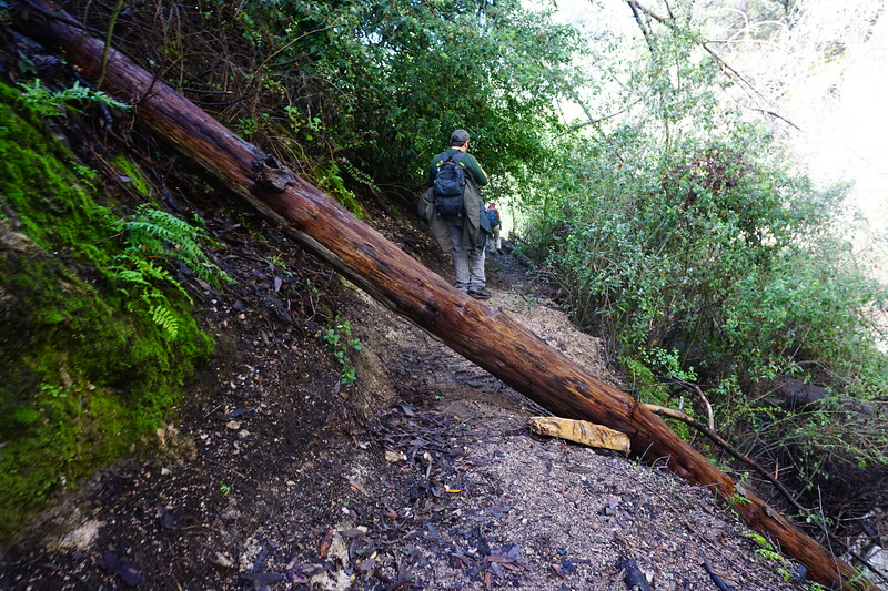 20160218056-Gabrielino Trail Scouting.JPG