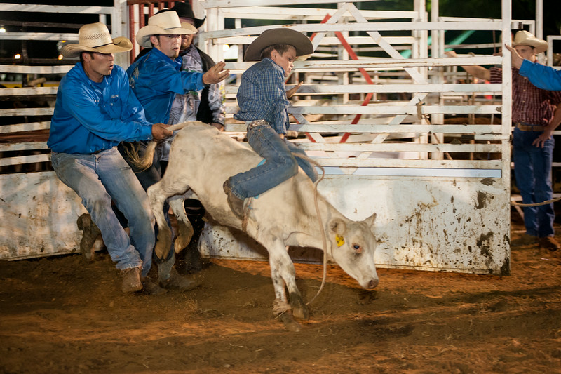 Coles Brooks second night riding a calf July 19, 2014