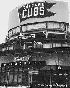 Chicago Landmarks