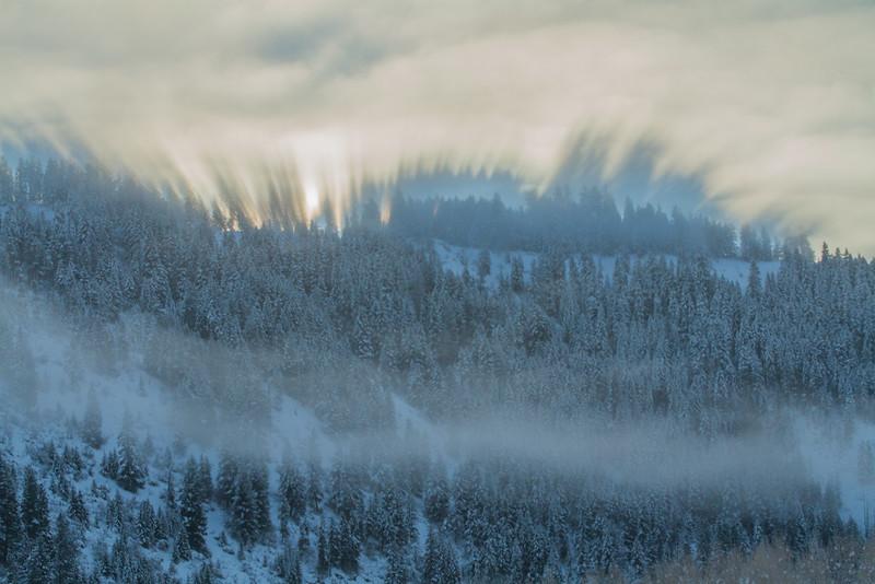winter 2015-9799.jpg