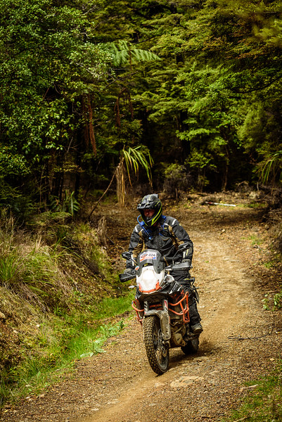 2019 KTM New Zealand Adventure Rallye (1303).jpg