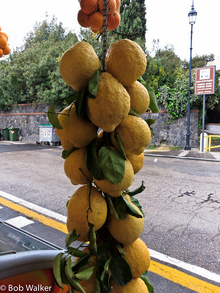 Huge lemons at a stand in Pompeii. Amalfi Coast is known for their huge lemons