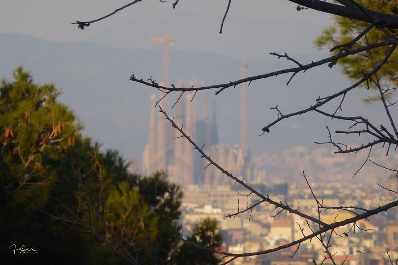 Barcelona December 2013-41.jpg