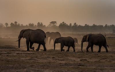 Adventure at Kenya