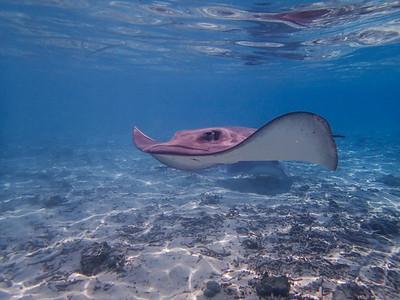 French Polynesia: Bora Bora