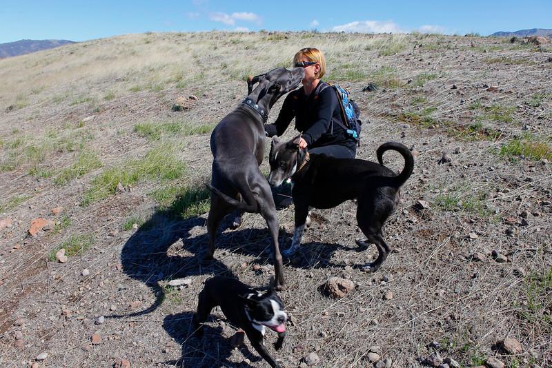 dogs_vasquez_037.jpg