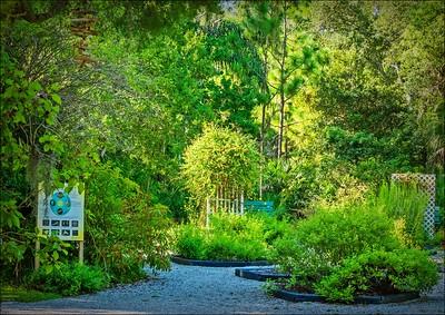 2020-08-04...Hammock Park,Dunedin,Fl....with Tippy