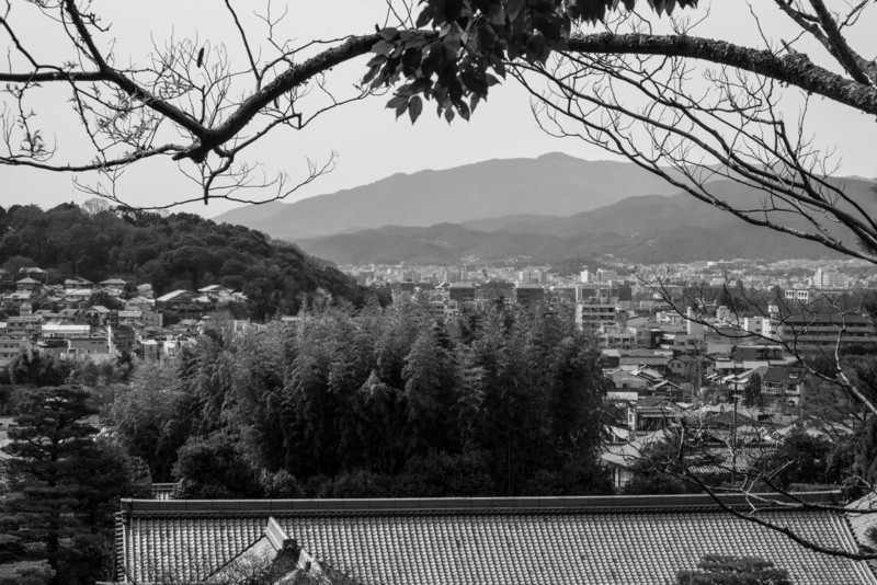 Kyoto Day 9 (228 of 317).jpg